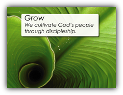 Grow - We cultivate God's people through discipleship.