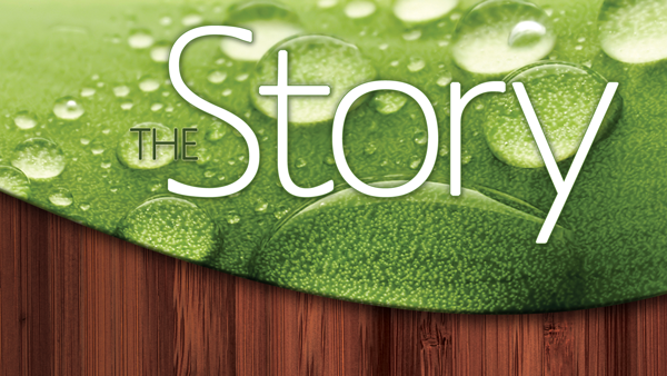 The-Story-600